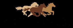 sonora-bank-logo-min